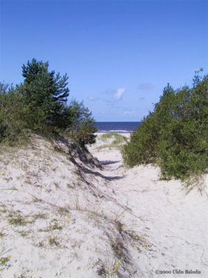 Ocean path.