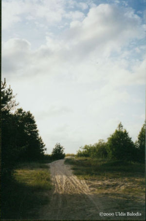 Path from the beach to Sīkrõg.